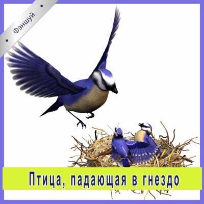 Активация «Птица, падающая в гнездо»