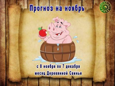 Прогноз на ноябрь месяц Деревянной Свиньи