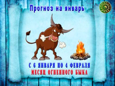 гороскоп фэншуй