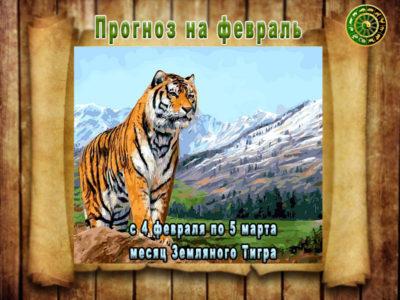 Прогноз на февраль месяц Земляного Тигра