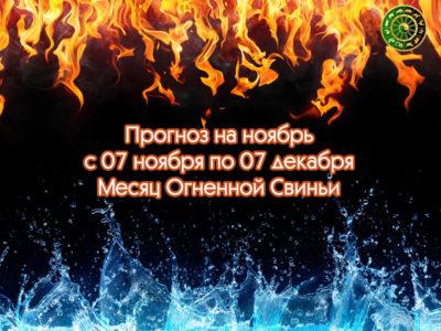 Гороскоп на ноябрь — месяц Огненной Свиньи