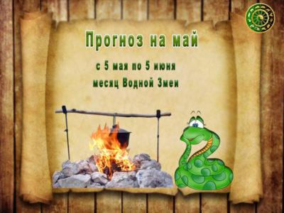 Гороскоп на май месяц Водной Змеи