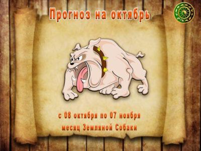 Гороскоп на октябрь. Месяц Земляной Собаки